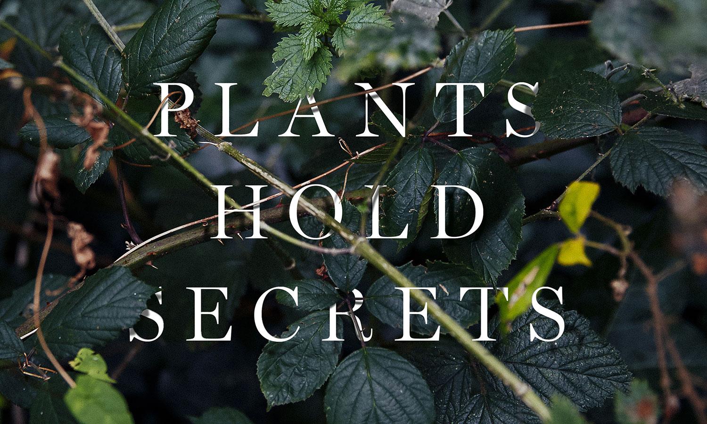 Mark Spencer forensic botanist
